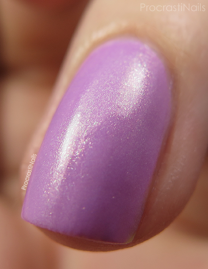 Macro of Beckoning Begonia from the CND Vinylux Garden Muse Collection