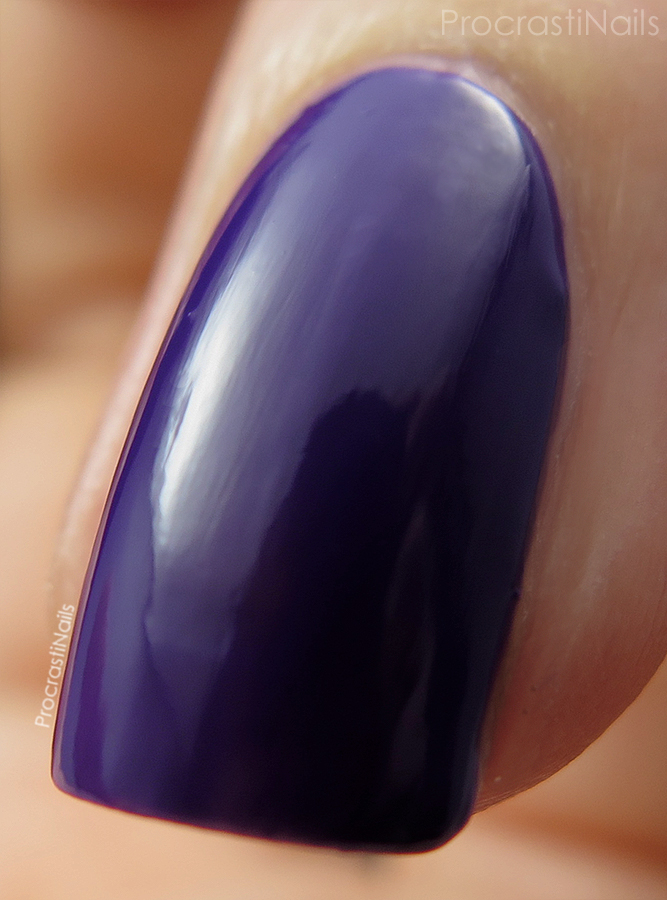 Macro of OPI Do You Have This Color In Stock-Holm? a deep grape creme